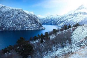 лес норвегия